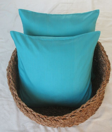 Blue accent pillows