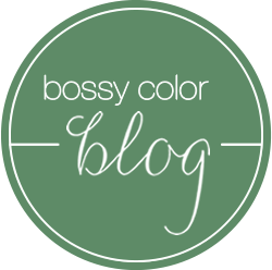 bossy color blog border=