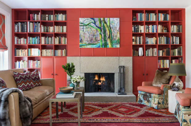 Library with red bookcases, concrete fireplace, and tribal rug