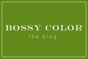 Bossy Color The Blog