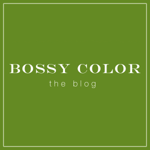bossy color blog